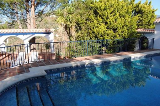 The spacious swimming-pool