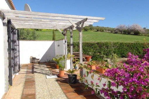 The splendid garden of the finca with colorful flowers