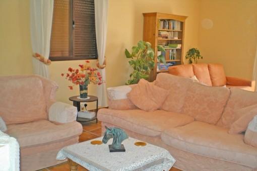 The stylish living room
