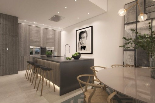 The elegant kitchen