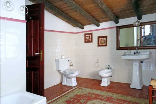 Capacious bathroom