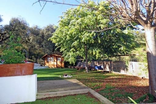 Backyard of the finca