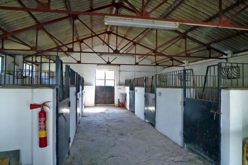 Horse stables of the hotel