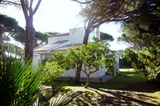 Back view of the finca
