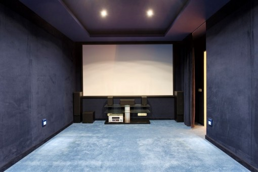 The home cinema with carpet flooring