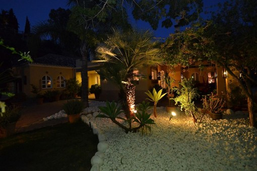 Other views of the front garden at night