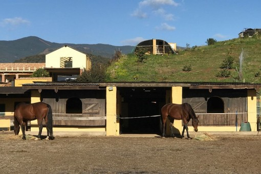 The riding facility with access to the villa