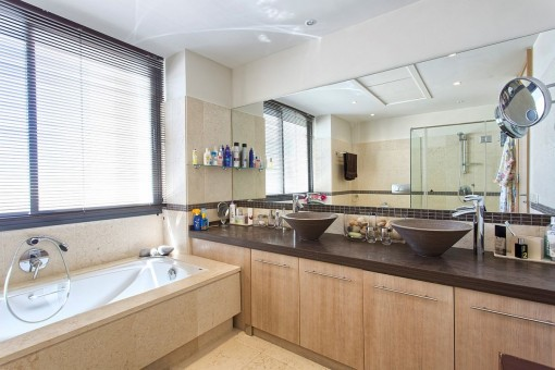 Alternative view of the master bathroom