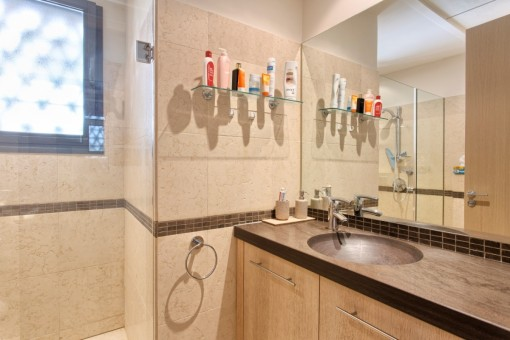 Alternative view of the guest bathroom
