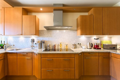 Sink unit with kitchen appliances