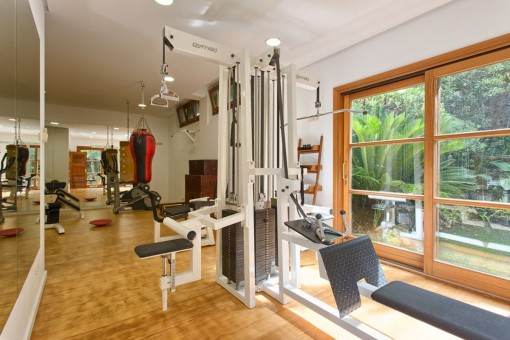 Gym with training devices