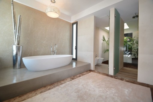 Luxurious bathroom with bathtub and shower