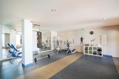 Excellent equipped gym