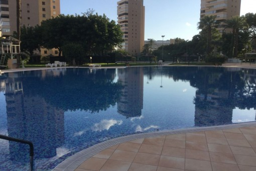 Spacious and well maintained pool area