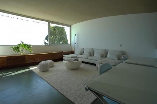 Large lightflooded living area