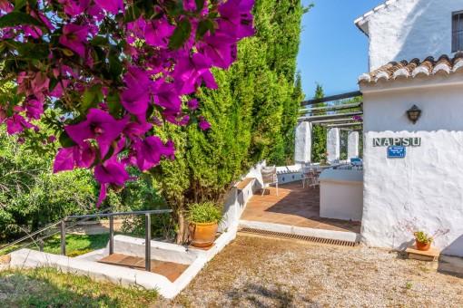 Villa 4 - Planted outdoor area
