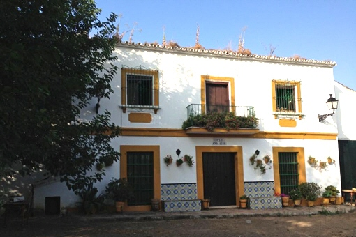 Andalusian property with huge plot in El Coronil